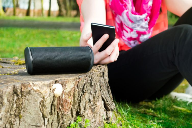 Which Bluetooth Speaker has the Best Bass Top 3 Bluetooth Speakers